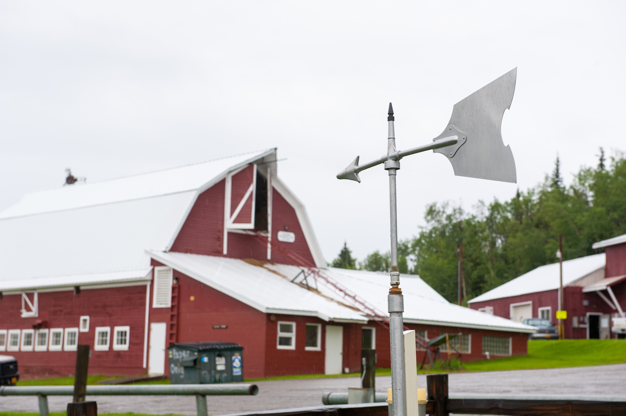 Weather vane at the Fairbanks Experiment Farm