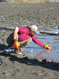 Suzanne McCarthy collecting methane at Tolsona mud volcano