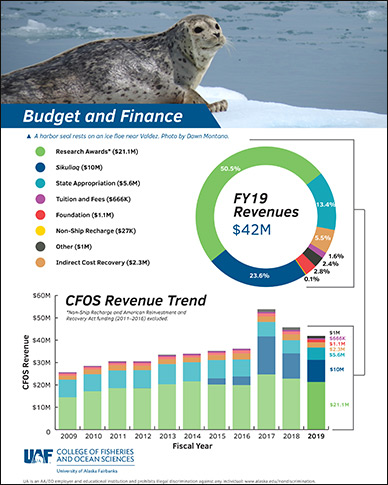 CFOS budget and finance flyer