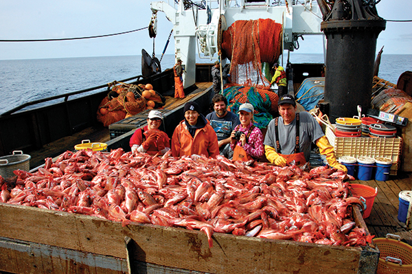 A fishing boat loaded with fish. Photo by Pam Goddard
