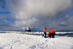 Researchers working on ice during Sikuliaq's Juranek cruise. Photo by Kim Kenny.