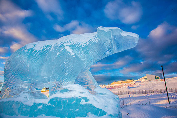 Polar bear ice sculpture on UAF campus