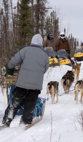 person on dogsled with snow machines approaching