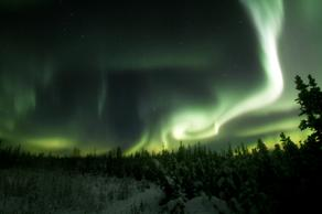 Image of a green aurora light over a landscape of trees.