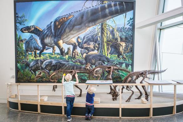 The museum's new dinosaur display features mounts built from plastic resin casts of real bones from the museum's collection. The skeletons of the newly named species Ugrunaaluk kukpikensis are standing in front of a realistic painting of them by Anchorage artist James Havens.