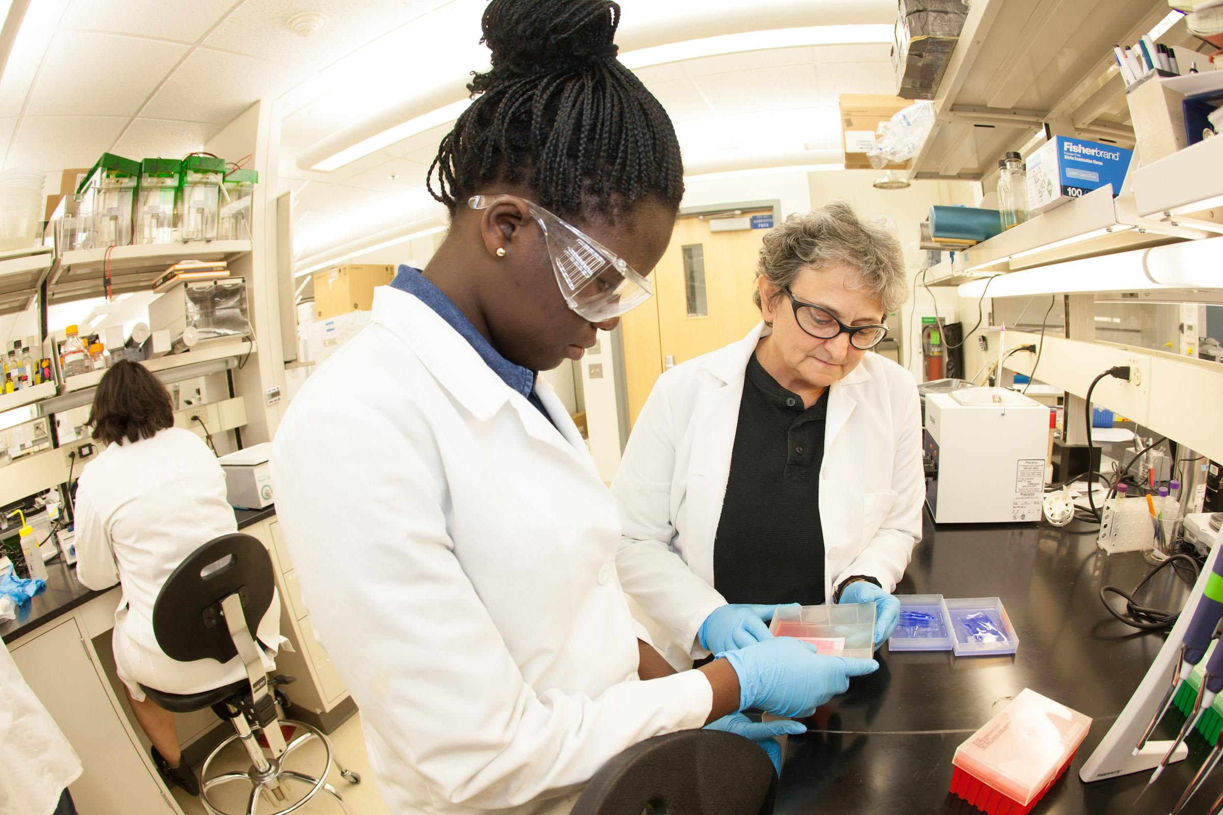 Ololade Olwale (left) and teacher, Paula Dell of Chicago look at samples taken in Antarctica at the Arcic health and Research Building.