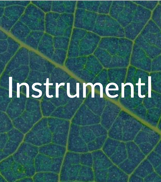 Word - Instrumentl - superimposed over leaf background