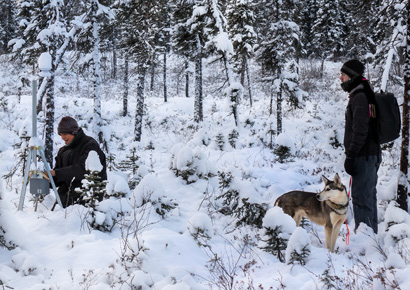 Travis Cooper, TWT student in Nikolai, AK collects data on permafrost with his students.